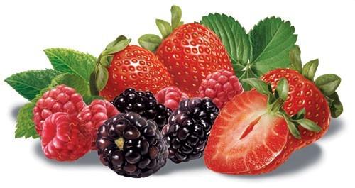 Frutas - Frutas vermelhas - Parte II