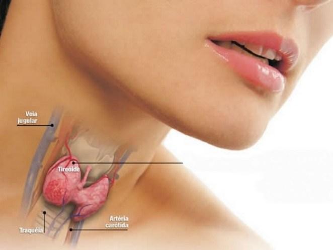 tireoide - Hipotireoidismo e hipertireoidismo. Qual a diferença dessas duas doenças?
