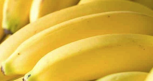 bananas raw 538 538x286 - Dieta da Banana: Já Conhece?