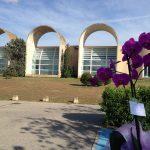 Orchids and Crematorium