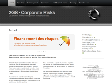 2gs Corporate Risks - Site RapidWeaver