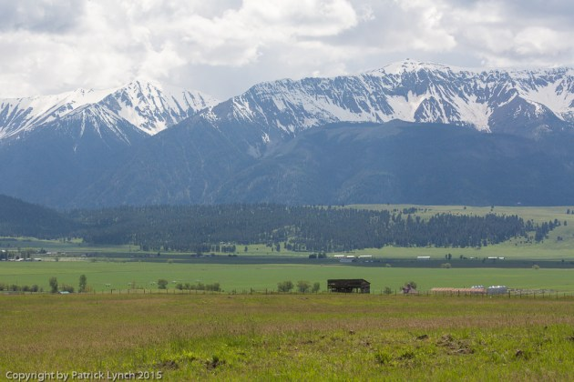 Wallowa-Whitman Mountains above wheat