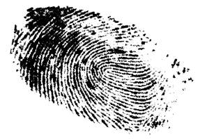 Unique fingerprint