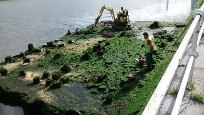 A primeras horas de la mañana del lunes 23 comenzaron los trabajos de destrucción de los restos arqueológicos del cargadero.