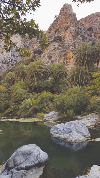 Πρέβελη: Στη μαγεία του φοινικόδασους, του ποταμιού και της λίμνης