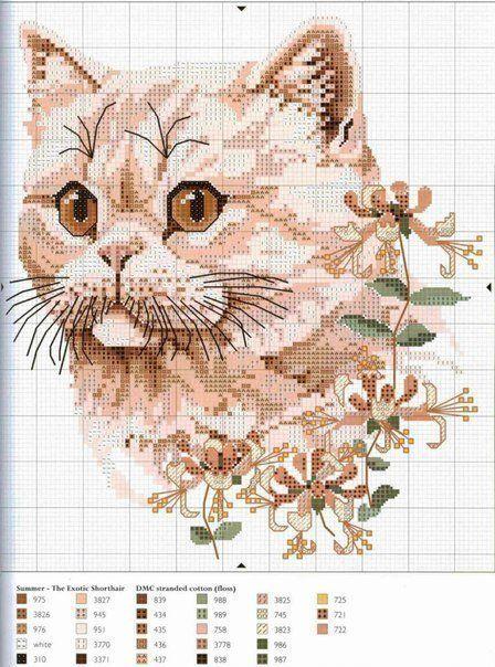 Gatos en punto de cruz (4)