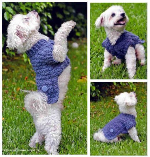 Suéter a crochet con bolsillos y botones para mascotas - Patrones gratis