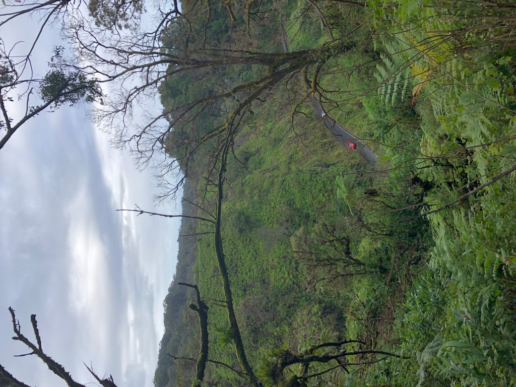 Peeking down at the Road to Hana from a view point - Maui, Hawaii #roadtohana #roadtrip #USroadtrip #thelongandwindingroad