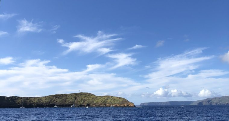 Things to do in Maui with Kids: Molokini Snorkeling