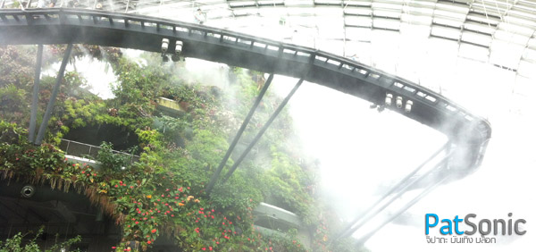 ภายใน Cloud Forest Dome - Garden by the Bay - Singapore