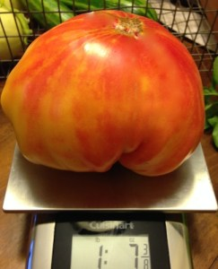 Big, meaty, tomatoes good for fresh eating and canning