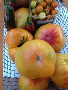Six tomatoes fill up the basket (+ a pint of cherry tomatoes.)