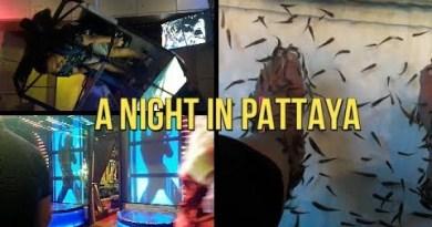 An evening in Pattaya