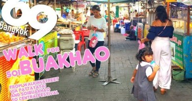 Fling For soi Buakhao From Strolling Freeway/Pattaya