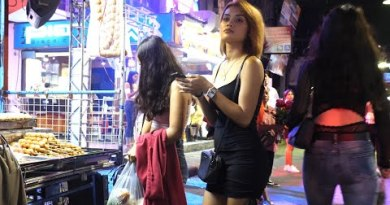 Pattaya Walking Avenue – Avenue Meals And Nightlife