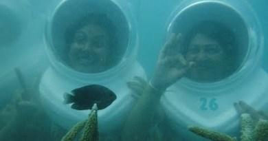 To attain in Pattaya, Thailand: Coral island underwater tear