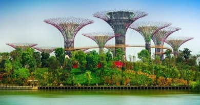 Singapore Malaysia Thailand Cruise – Issues To Build & Vacationer Attraction – Flamingo Travels