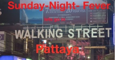 Nightlife in WalkingStreet | Pattaya | 2017 | 🇹🇭