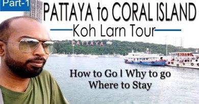 Pattaya to Coral Island I Koh Larn Island Tour I Thailand Tour