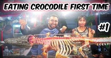 Eating Crocodile with Thai Girlfriend | Pattaya Thailand | Exotic Avenue Meals | Ketan Singh Vlogs #1