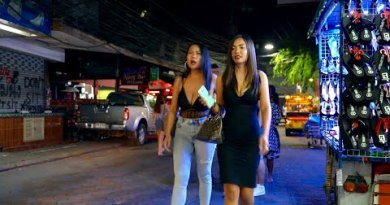 Pattaya Walking Street – Within the assist of the scenes