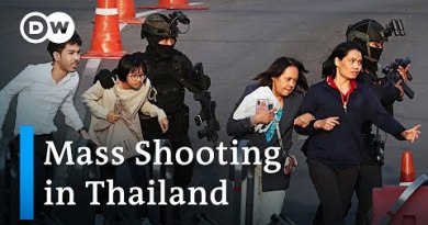 What's in the aid of the Thailand mass shooting? | DW Recordsdata