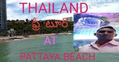 Pattaya Seaside Avenue to Bali hai Pier By strolling|Pattaya|Thailand