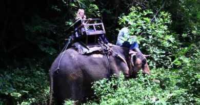 Thailand Scuttle – Scuttle Scuttle Thailand