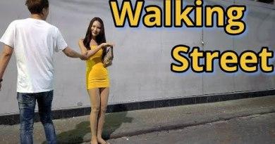 Pattaya. Appropriate a lag in the mutter Walking Avenue