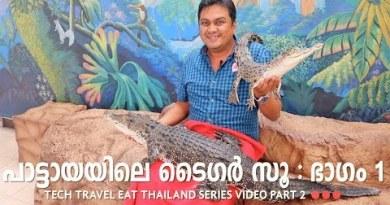 Sriracha Tiger Zoo Part 1 – Pattaya – Tech Commute Delight in Thailand Malayalam Video Part 2
