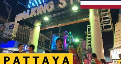 PATTAYA THAILAND WALKING STREET  2019 / ENGINEER DUKE