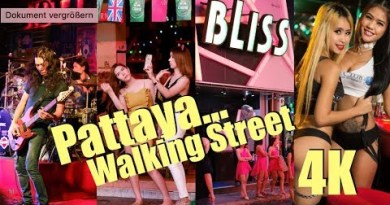 Pattaya Walking Avenue, Stroll round and ranking relaxing….!!!