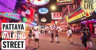 A Queer Attractions of Pattaya Walking Avenue ll 💃