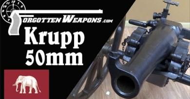 Krupp 50mm Mountain Guns for Siam (Thailand)