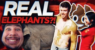 MUD PLAYING WITH ELEPHANTS?! | BANGKOK, THAILAND