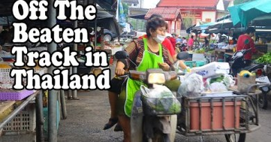 Off the Crushed Song in Thailand: DELICIOUS FOOD in TRANG. Avenue Food, Ingesting places and Markets