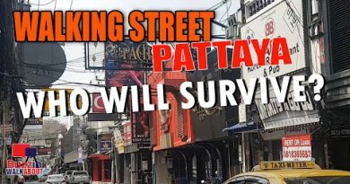 Walking Avenue Pattaya, Agogo's and bars, who will live to command the tale put up COVID?  Fragment TWO January 2021