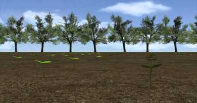 Thailand seed bombs: aerial reforestation to foster recent order on broken land by 2017