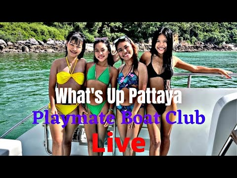What's up Pattaya Livestream from Thailand Pattaya Boat bolt