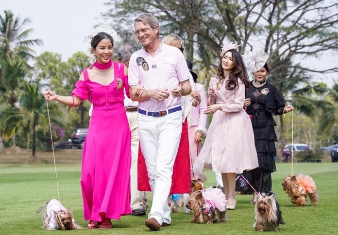 Yorkshire terriers from the Yorkshire Terrier Club Thailand strut in a parade, led by Khun Namhom, HRH Princess Sirivannavari Nariratana Rajakanya's dog.