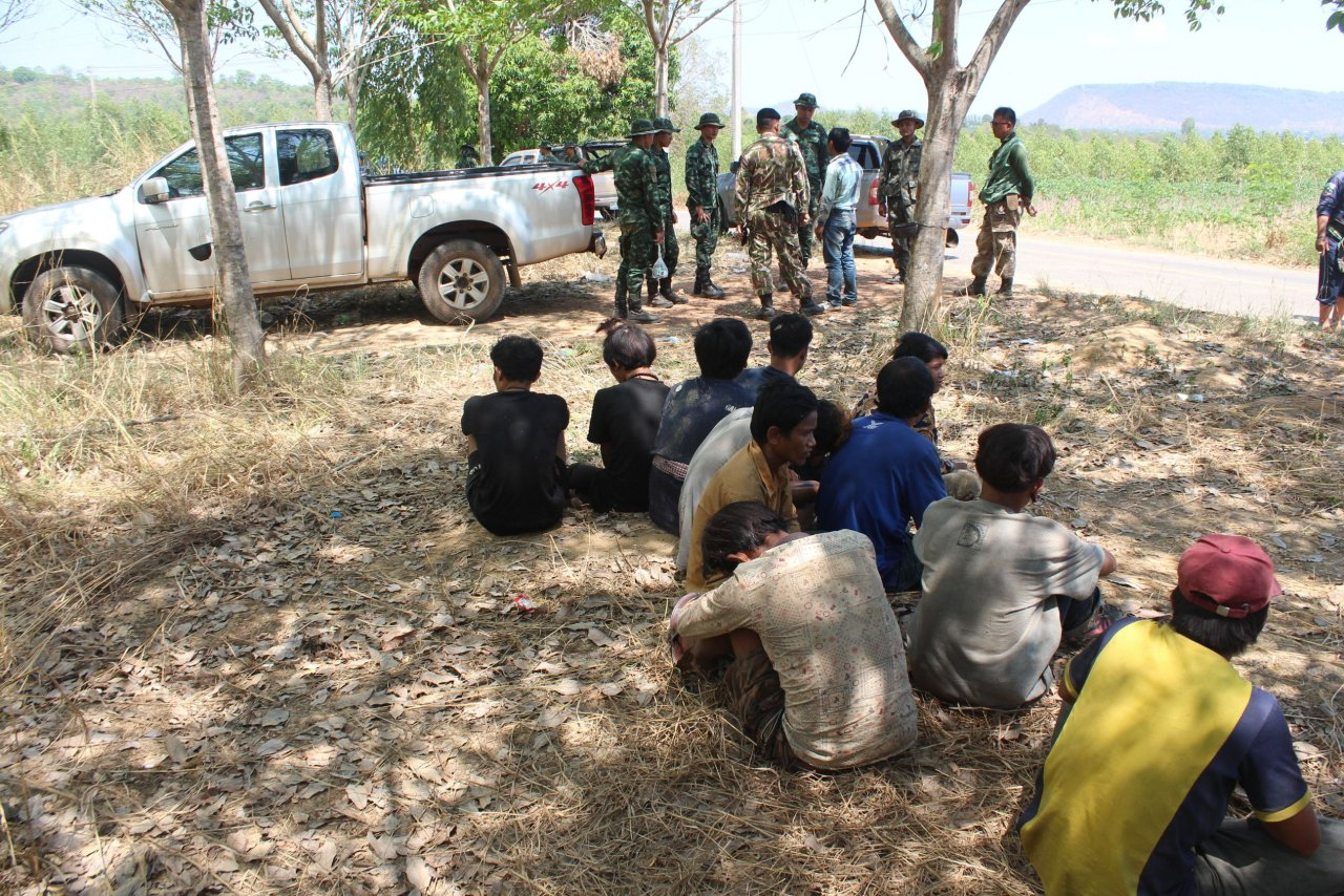12 undocumented Cambodians arrested in rubber plantation