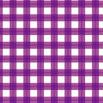 2重に重なる紫色のギンガムチェック