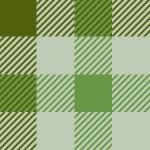 緑色基調のガンクラブチェックパターン