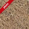枯れた芝生の写真加工パターン