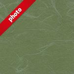 緑色の和紙の写真加工パターン