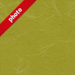 黄色の和紙の写真加工パターン