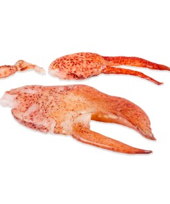 MAINE LOBSTER CLAW & KNUCKLE MEAT 6 lbs total