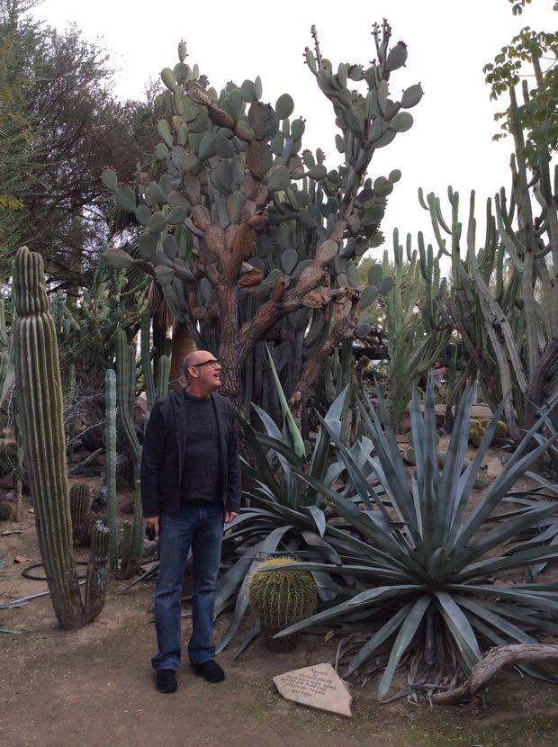 I Think Of The Moorten As Kind Of A Scrappy Desert Cousin To The Huntington  Rare Cactus And Succulent Garden In ...