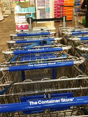 Container-store-carts-happiest-place-on-earth