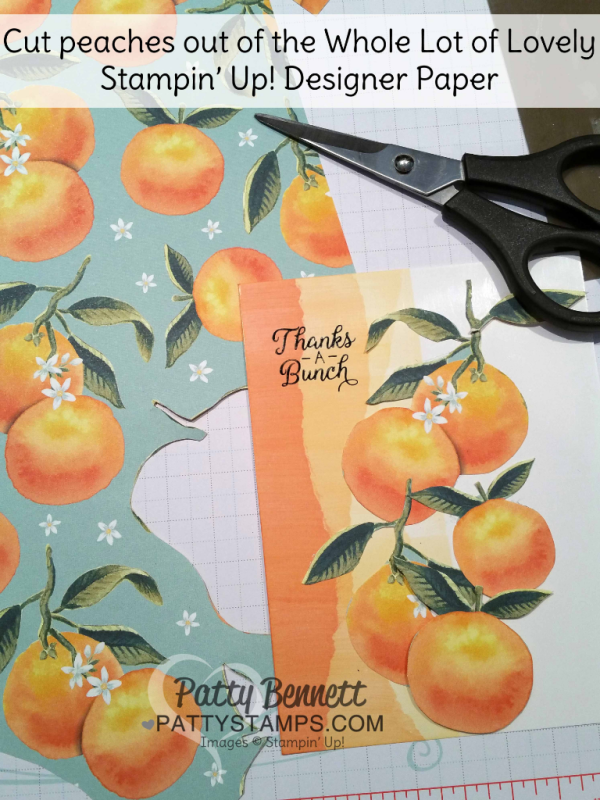 "Faux Torn Edge featuring glossy paper and Stampin' Up! ink pads and peaches from the Whole Lot of Lovely designer series paper packet.  Card ideas and ""how to"" tutorial by Patty Bennett"